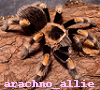 arachno_allie userpic