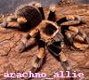 arachno_allie userpic