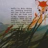 kit: bambi