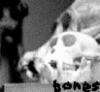 Bones: never tell