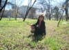 nadinriazanova userpic