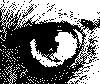 labix userpic