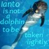 Ianto the wonder dolphin