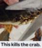 Мимокрокодил [userpic]