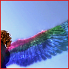 KROOO Dreaming Ankh's wing