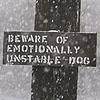 dogstarred userpic