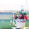 cheery, hello, cups, thank you, a teacup filled with flowers