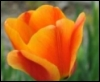 subwaygraffiti userpic