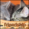 EPandora: Kitty Friendship