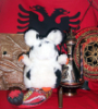 p_krysa_shqiperia
