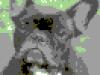 c64bulldog
