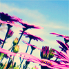 lovesong_wong userpic