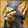 Я Рыцарь