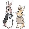 MV: Sherlock - rabbits