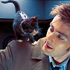 Lenre Li: DW - Doctor + kitty = love