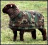 military_sheep userpic