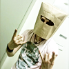 saga paper helmet