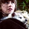 Campaspe: Game of Thrones \\ Bran &Summer