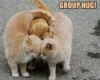 Deborah Henning-Huff: Group Hug
