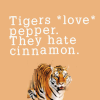 Tigers Loves Pepper