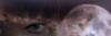 yasnyisvet userpic