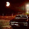 impala-moon