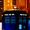 queen of pain: doctor who: tardis