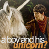Merlin and his Unicorn
