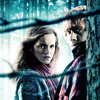 Harry Potter: Ron & Hermione Barbed Wire