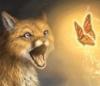 angry_fox_sue userpic