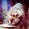 Jaclyn: Stock - Otter