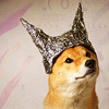 Puppy Tinfoil Hat