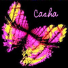 Casha Pink Butterfly