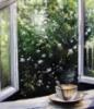 taksa_ru: окно в сад
