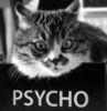 psychocat_0_o userpic