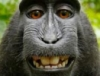 black makaka