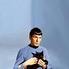 [ST] S // cat