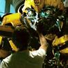 Transformers - Bee Sam