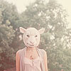 idle_owl userpic