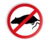 anti_rat userpic