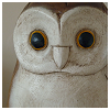 thewhiteowl userpic