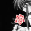 ❦ rose garden.