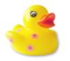duck_ugly userpic