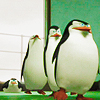 Madagascar penguin march