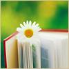 Stock - Book daisy