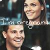 Fandom - Bones - Boothan - I'm Pregnant