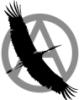 black_busel userpic