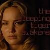 awake: sleeping tiger, raven: awaken