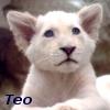 teo_lionheart userpic