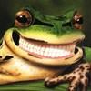 Maura: жабО